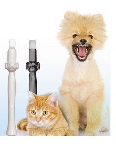 AE Dogz whitening sponge tegen tandsteen , plak bij honden en katten